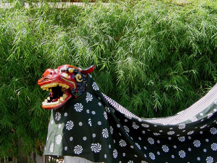 The Costume Of Shishimai